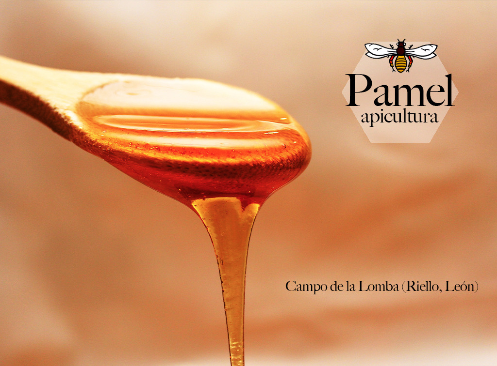 Pamel-miel-de-leon-ladespensa-diariodeleon