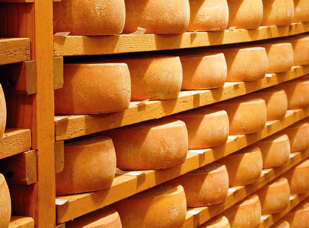soterano-queso-de-leon-ladespensa-diariodeleon_0003_queso-soterano-estanteria-maduracion