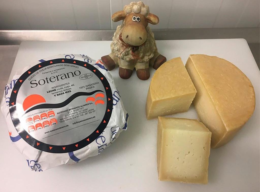 soterano-queso-de-leon-ladespensa-diariodeleon_0005_SEMICURADO 4