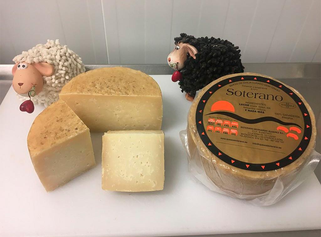 soterano-queso-de-leon-ladespensa-diariodeleon_0008_CURADO