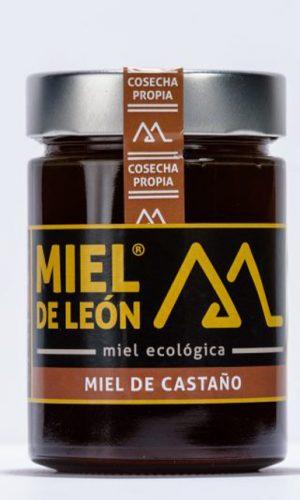 miel-de-leon-ecologica-ladespensa-diariodeleon-_0000_miel-de-castaño450-gr-e1543615690288