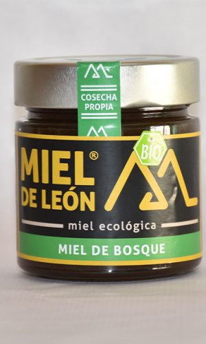 miel-de-leon-ecologica-ladespensa-diariodeleon-_0002_RRP_1776-1-e1576492143396