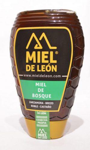 miel-de-leon-ecologica-ladespensa-diariodeleon-_0003_DSC_0010-e1490960727840