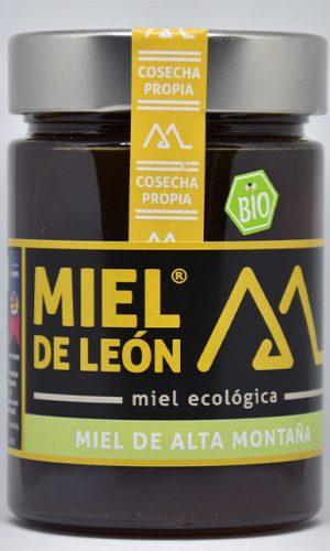 miel-de-leon-ecologica-ladespensa-diariodeleon-_0004_RRP_2228-scaled