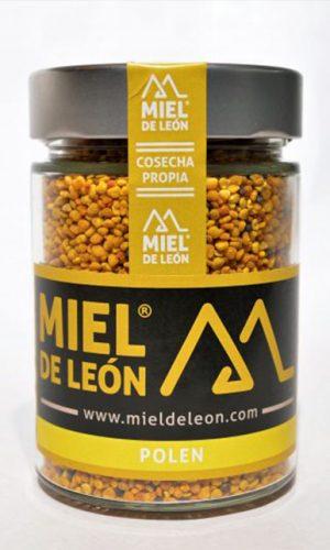 miel-de-leon-ecologica-ladespensa-diariodeleon-_0005_DSC_0011-e1490961509267