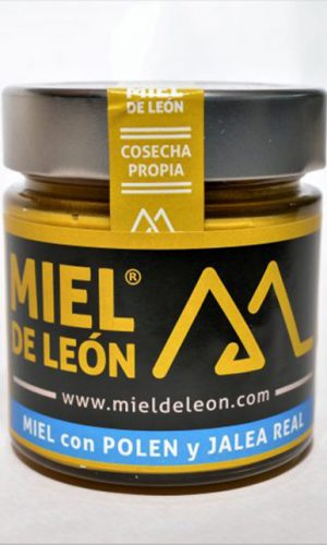 miel-de-leon-ecologica-ladespensa-diariodeleon-_0006_DSC_0014-e1490961080527