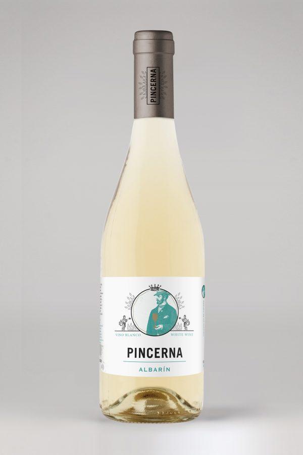 pincerna-albarn