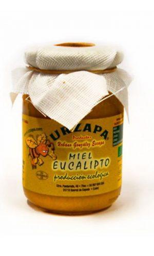 urzapa-miel-la-despensa-de-diariodeleon__miel-eucalipto-12-kilo